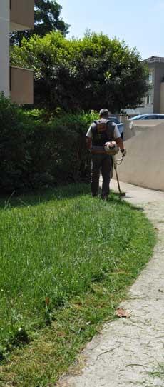 Fiche tondre pelouse - Tondre la pelouse sans ramasser ...